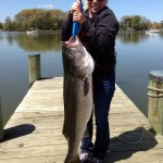 (no title) (Maryland DNR Weekly Fishing Report Overview | May 08, 2013)