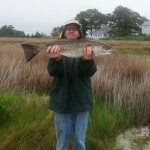(no title) (Maryland DNR Weekly Fishing Report Overview | May 29, 2013)