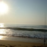 tn_dsc02633.jpg (About Fish Ocean City MD (OCMD))