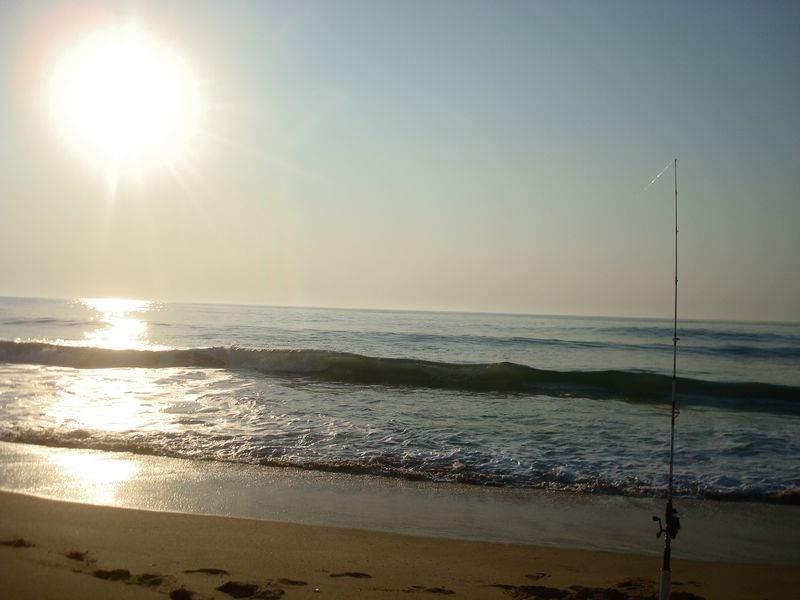 Ocean city Surf Fishing
