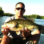(no title) (Maryland DNR Weekly Fishing Report Overview | June 12, 2013)